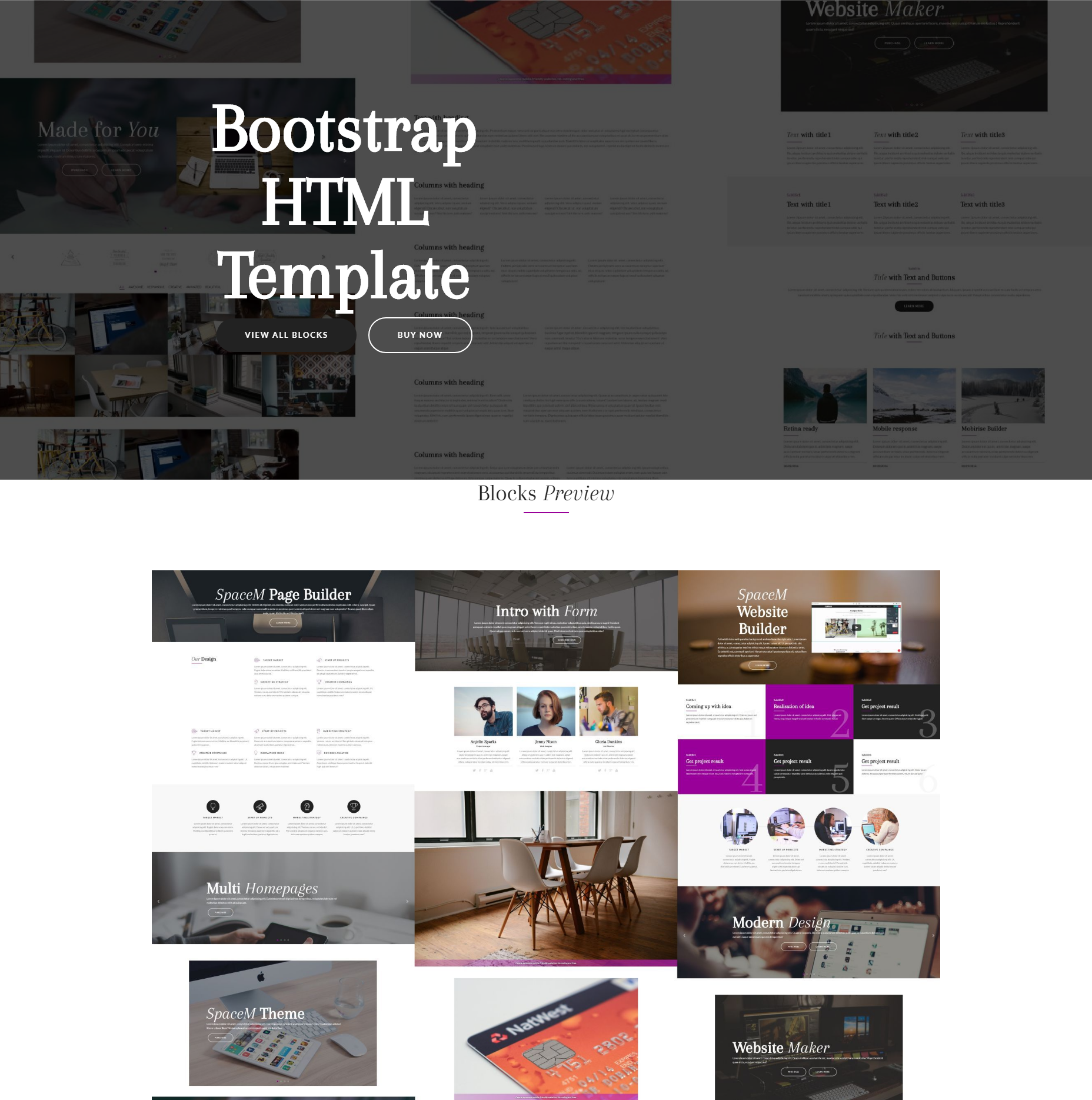 Responsive Bootstrap SpaceM Templates